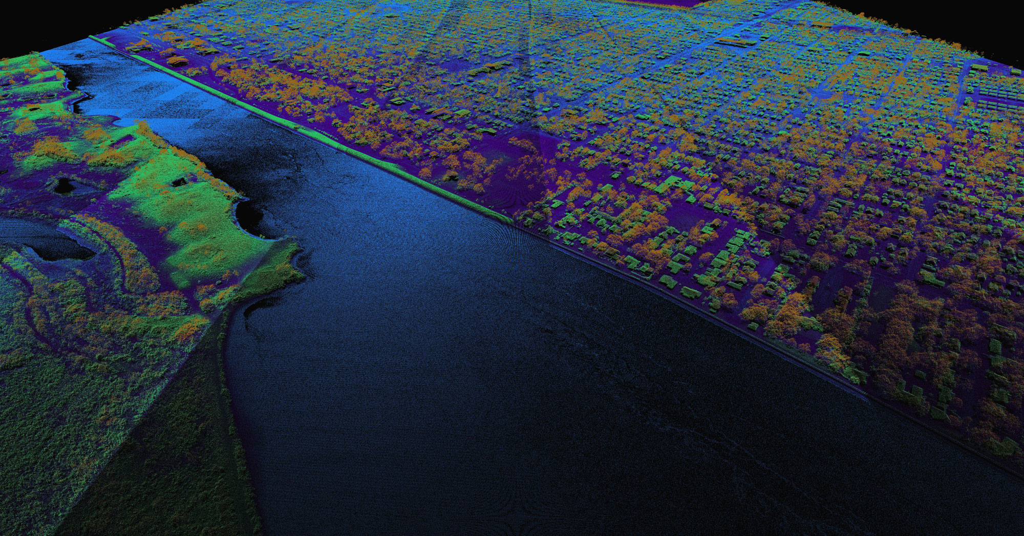 detail image of the Jefferson and Liberty County Lidar